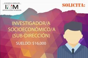 invetigador-socieconomico-subdireccion-inm-aifcf